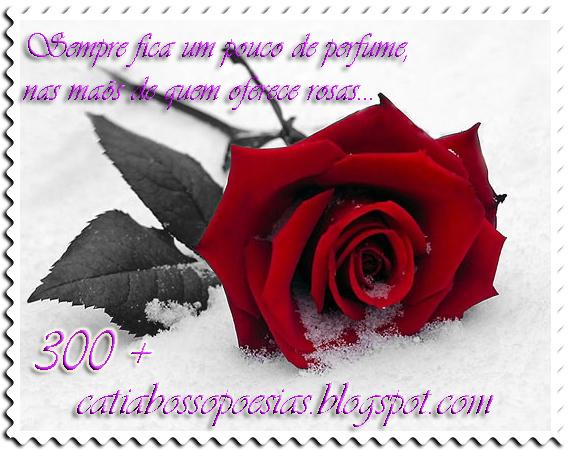 Catia Bosso