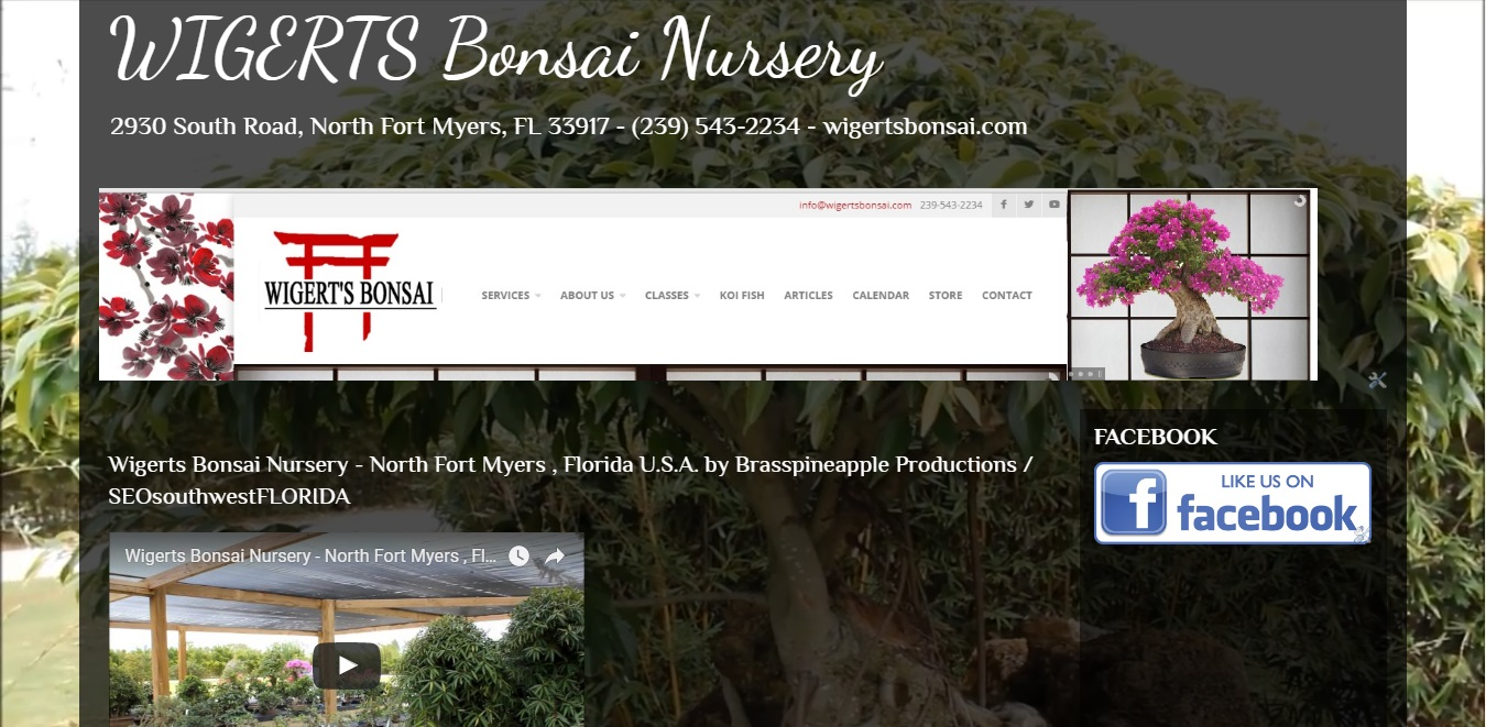 Wigerts Bonsai Nursery