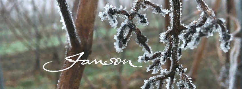 Weingut Janson - Blog
