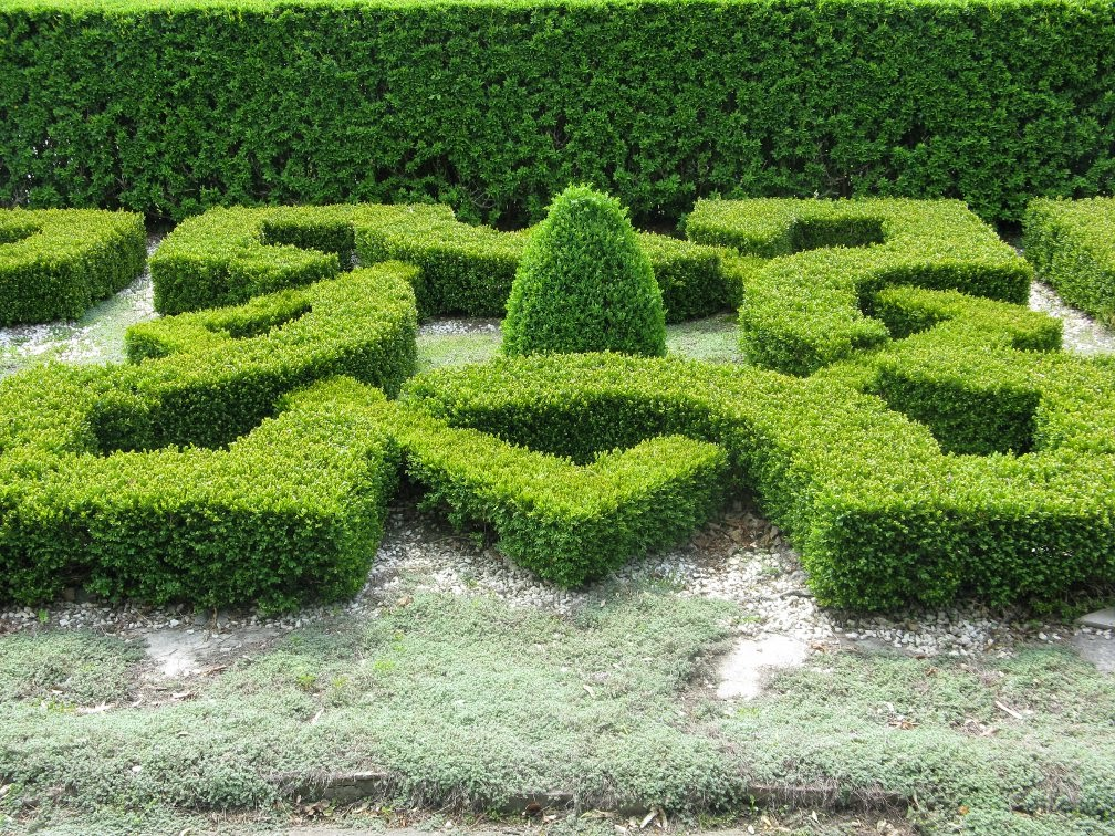 Royal Botanical Gardens clipped boxwood knot Laking  garden by garden muses-not another Toronto gardening blog