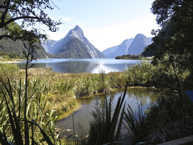 New Zealand Milford Sound By my Hubby Art