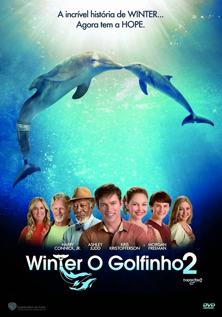 Winter: O Golfinho 2 – Dublado (2014)