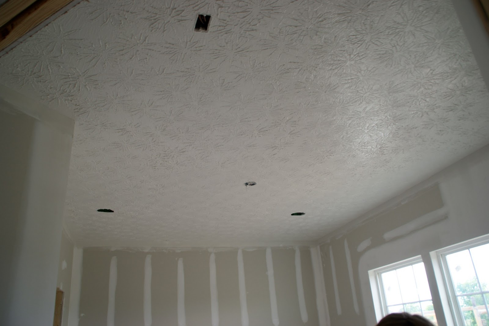 Building Our Heavenly Highgrove: Day 54: Ceiling Textured