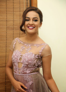Actress Seerat Kapoor Pictures in Long Dress at Tiger Audio Launch  83.JPG