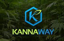 KANNAWAY - CBDS - CHECK OUT AMAZING PRODUCTS