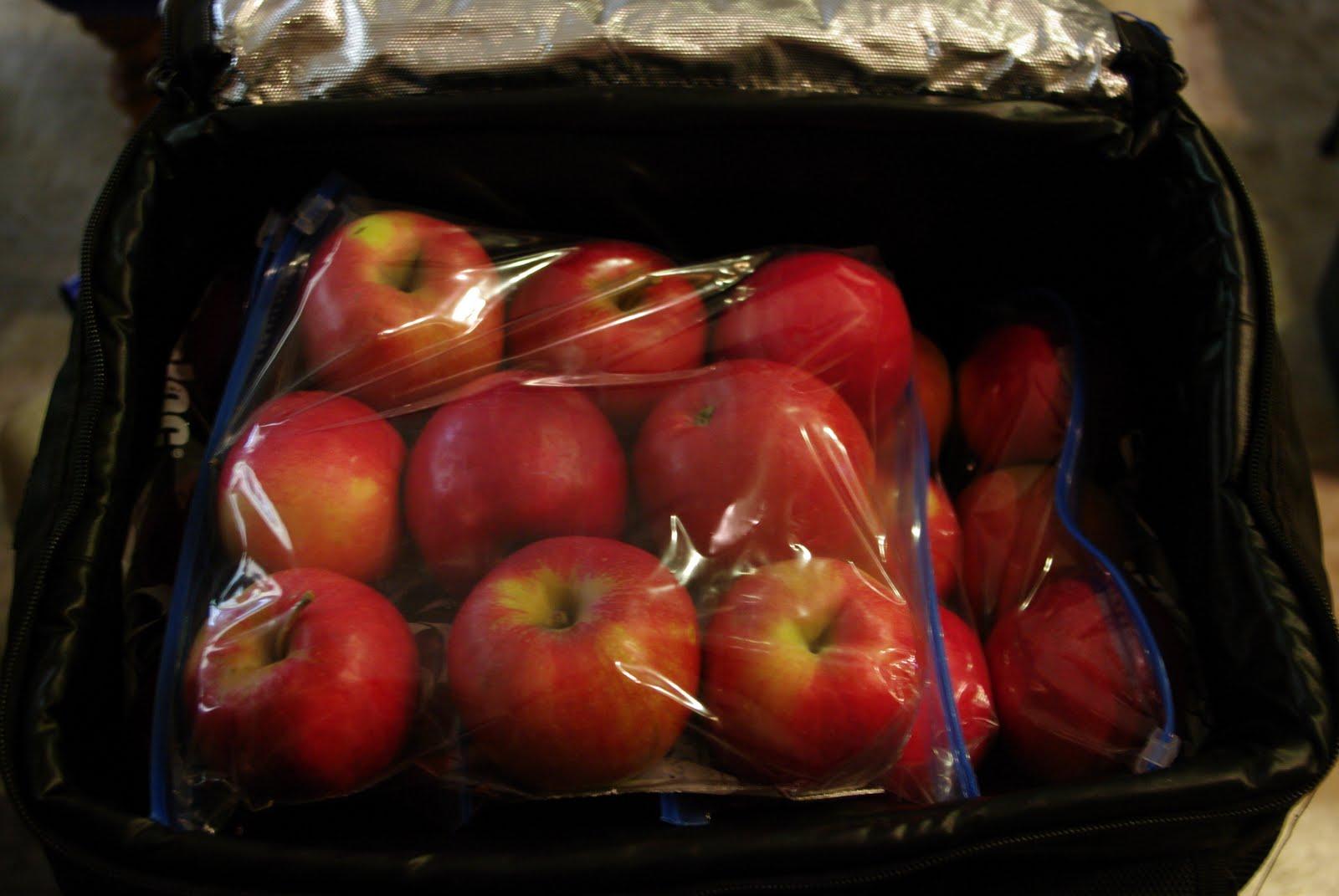 Как хранить яблоки зимой в домашних условиях 60