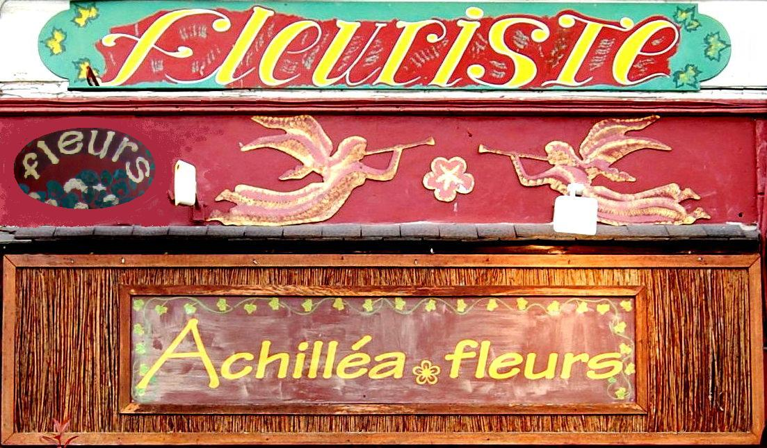 ACHILLEA FLEURS - MILLY-LA-FORET