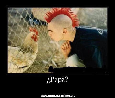¿Papá?... Imagenes de gente parecida para etiquetar en Facebook.