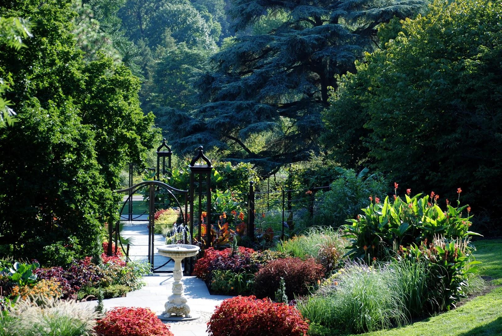 Arte y jardiner a trucos de jardiner a for Trucos jardineria