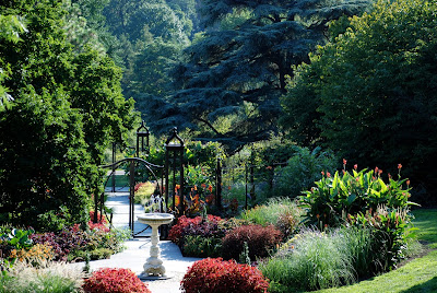 Arte y jardiner a trucos de jardiner a for Jardines que necesitan poca agua