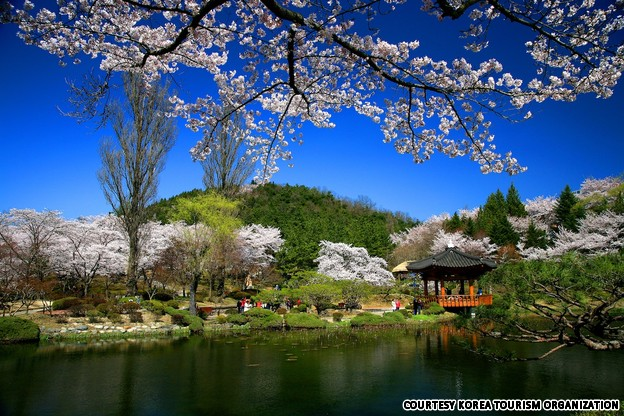top world travel destinations beautiful places to visit in korea
