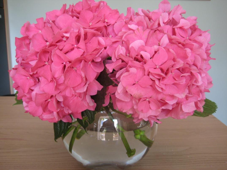 Flower Arrangement Pink Hydrangea Centerpiece : Vintage magnolia march