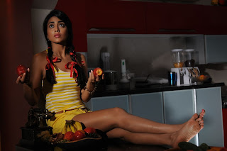 Shriya Saran Latest  Picture Shoot Gallery in Shorts  0035.jpg