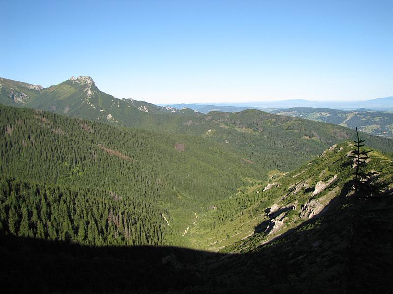 Dolina Jaworzynka.