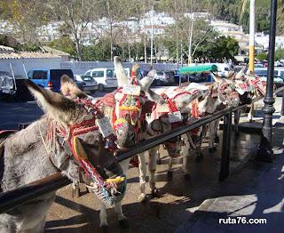 Parada de Burro-Taxi, Mijas Pueblo, Málaga