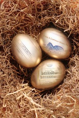 Financial Planning, Golden Egg in Nest