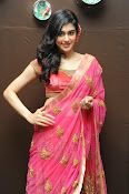 Adah Sharma Gorgeous in Pink Saree-thumbnail-11