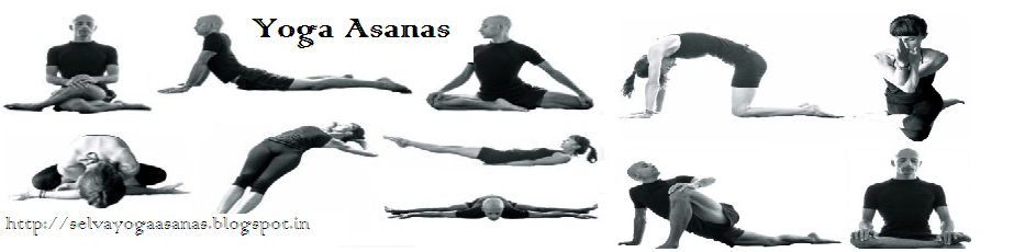 Yoga Asanas: Kung-fu Lessons for Beginners