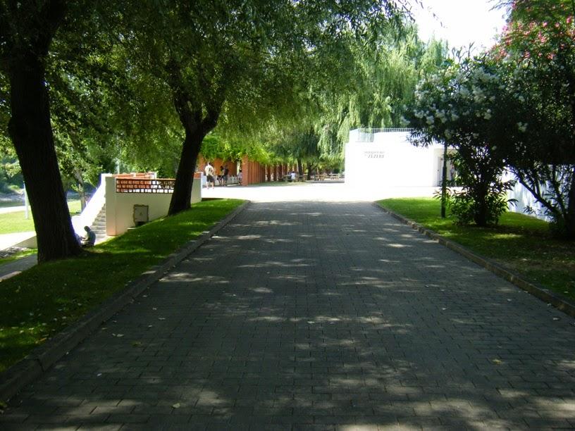 Zona para Passear á sombra junto á prais Fluvial
