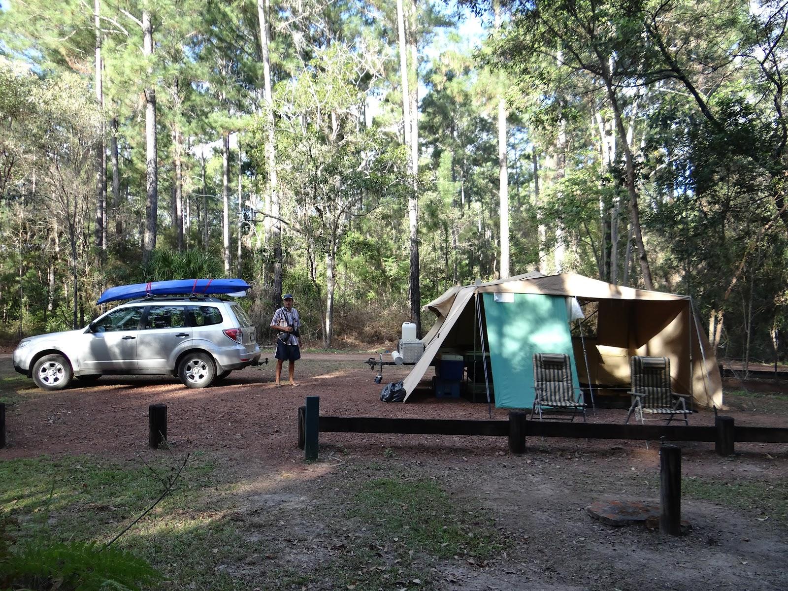 sunshinecoastbirds: Birding, Camping and Kayaking around ...