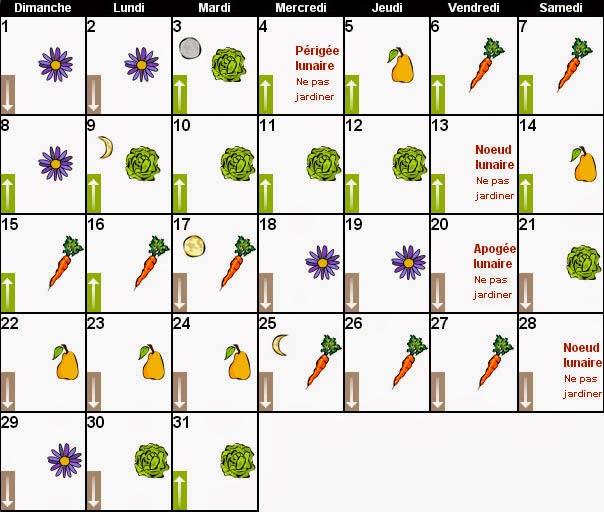 Au tour du jardin calendrier lunaire decembre 2013au tour for Calendrier entretien jardin