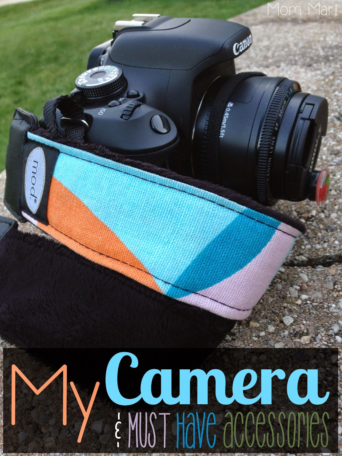 My Camera And Must Have Accessories: Which DSLR Camera, lens, & accessories I bought.