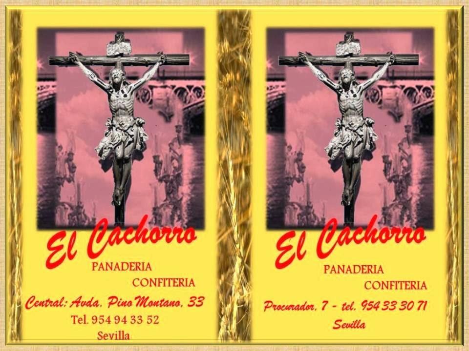 PANADERIA EL CACHORRO PROCURADOR