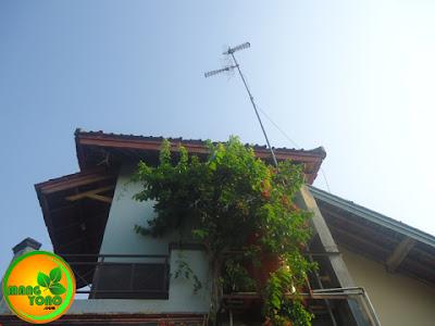 Resiko memasang antena Tv dengan tiang tinggi