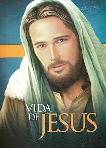 livro - vida de jesus.