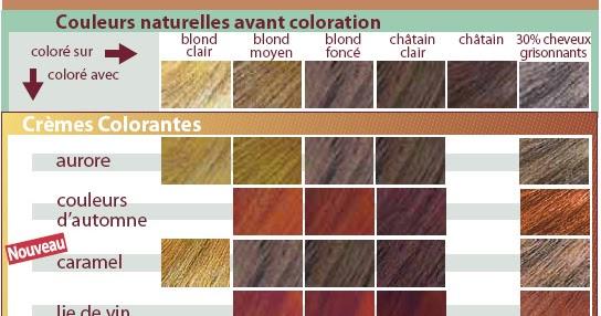 le journal capillaire daudrey des cheveux une pousse des soins colorations vegetales logona - Logona Coloration Cheveux Blancs