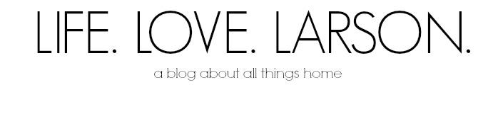 life.love.larson