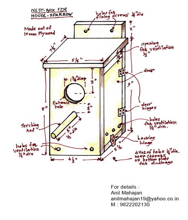 Bulbul Digiart Design Of Nest Box For House Sparrow