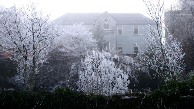 frost in Oughterard