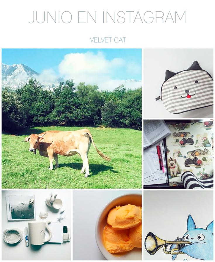 Junio en Instagram collage