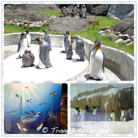 Taipei Zoo Penguin House