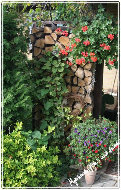 Cztery pory roku w moim ogrodzie