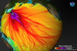 tsunami_waveheight.jpg