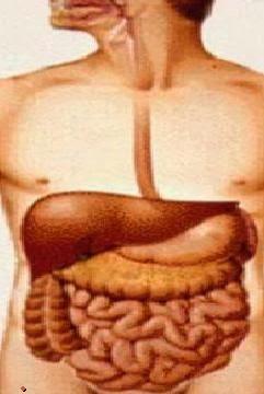 faringe infiammata rimedi