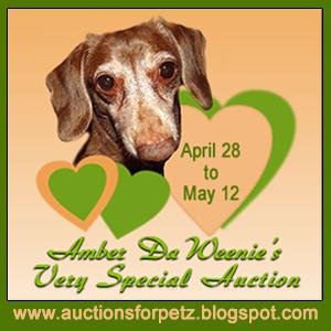 Auction for Amber Da Weenie