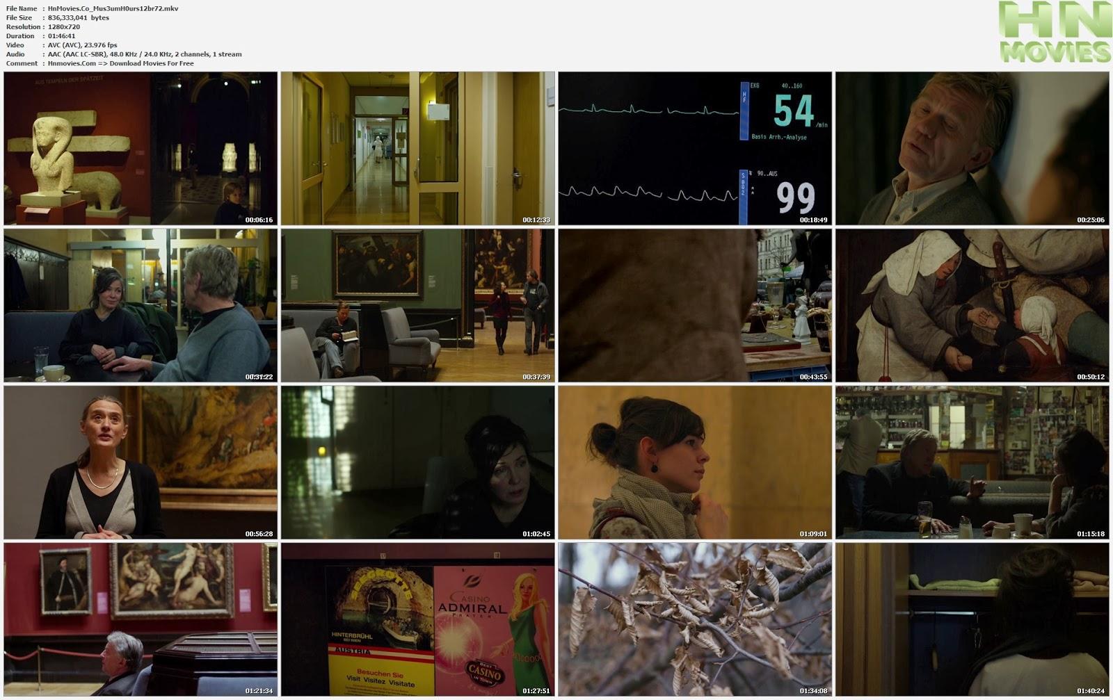 movie screenshot of Museum Hours fdmovie.com