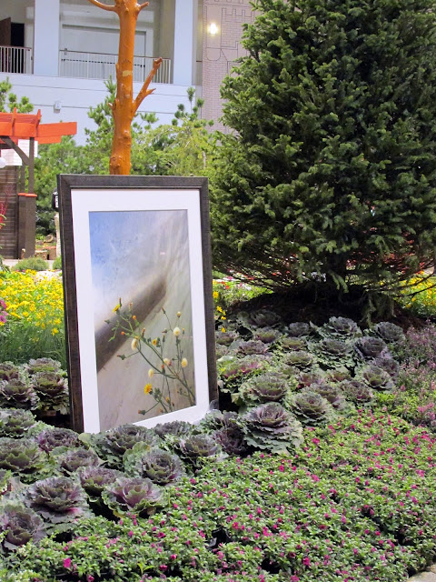 Framed photo in th Police Memorial Garden