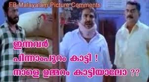 inavan pinnaam ouram kaatti, naale ummaram kaattiyaalo Meesamadhavan funny dialogue - Cochin hanifa