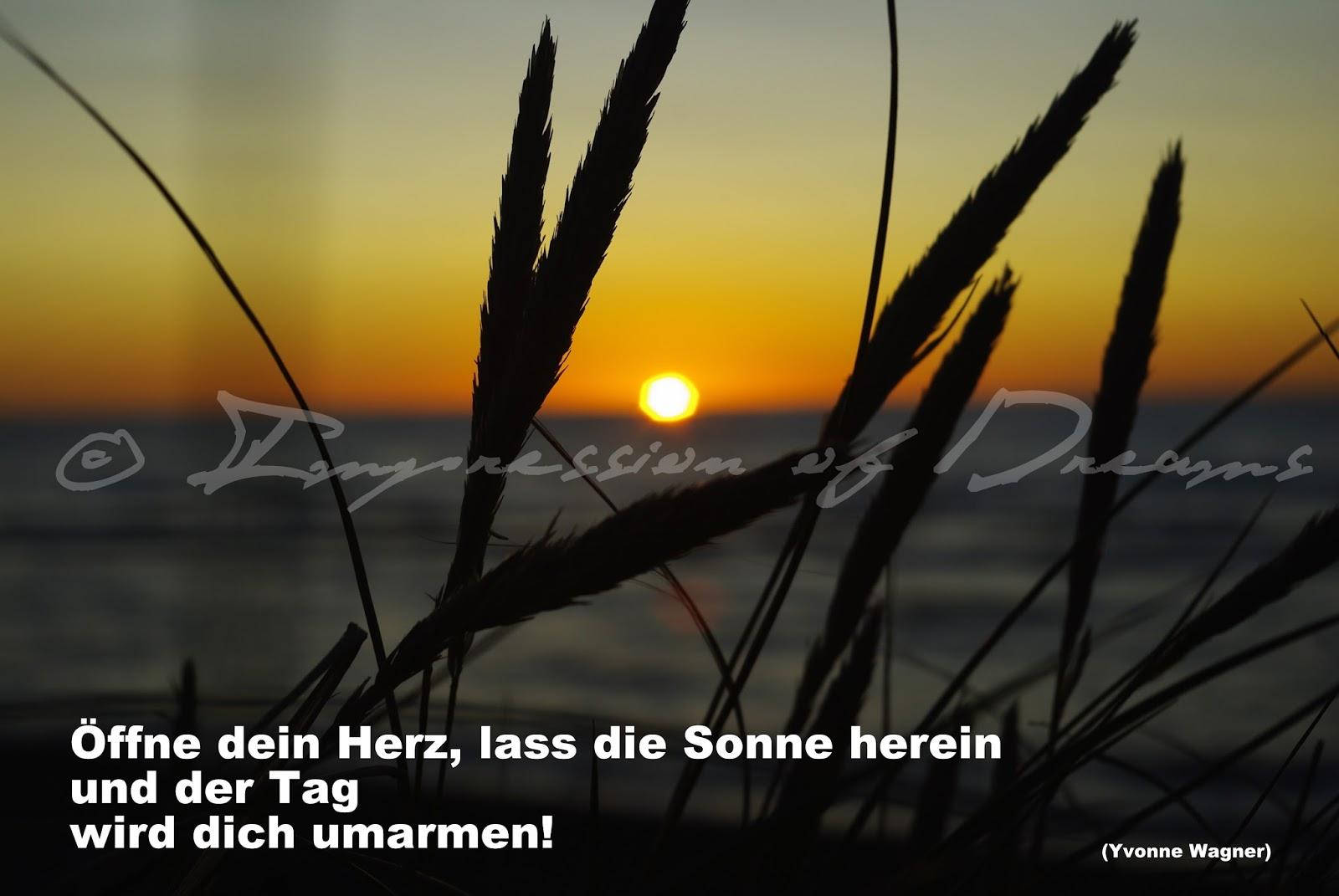 Öffne dein Herz, lass die Sonne herein und der Tag wird dich umarmen!
