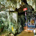 Nguoi Xua cave in complex of Cuc Phuong National Park