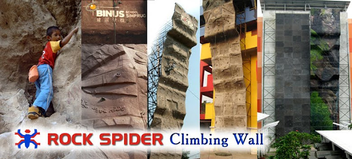 rock spider climbing wall