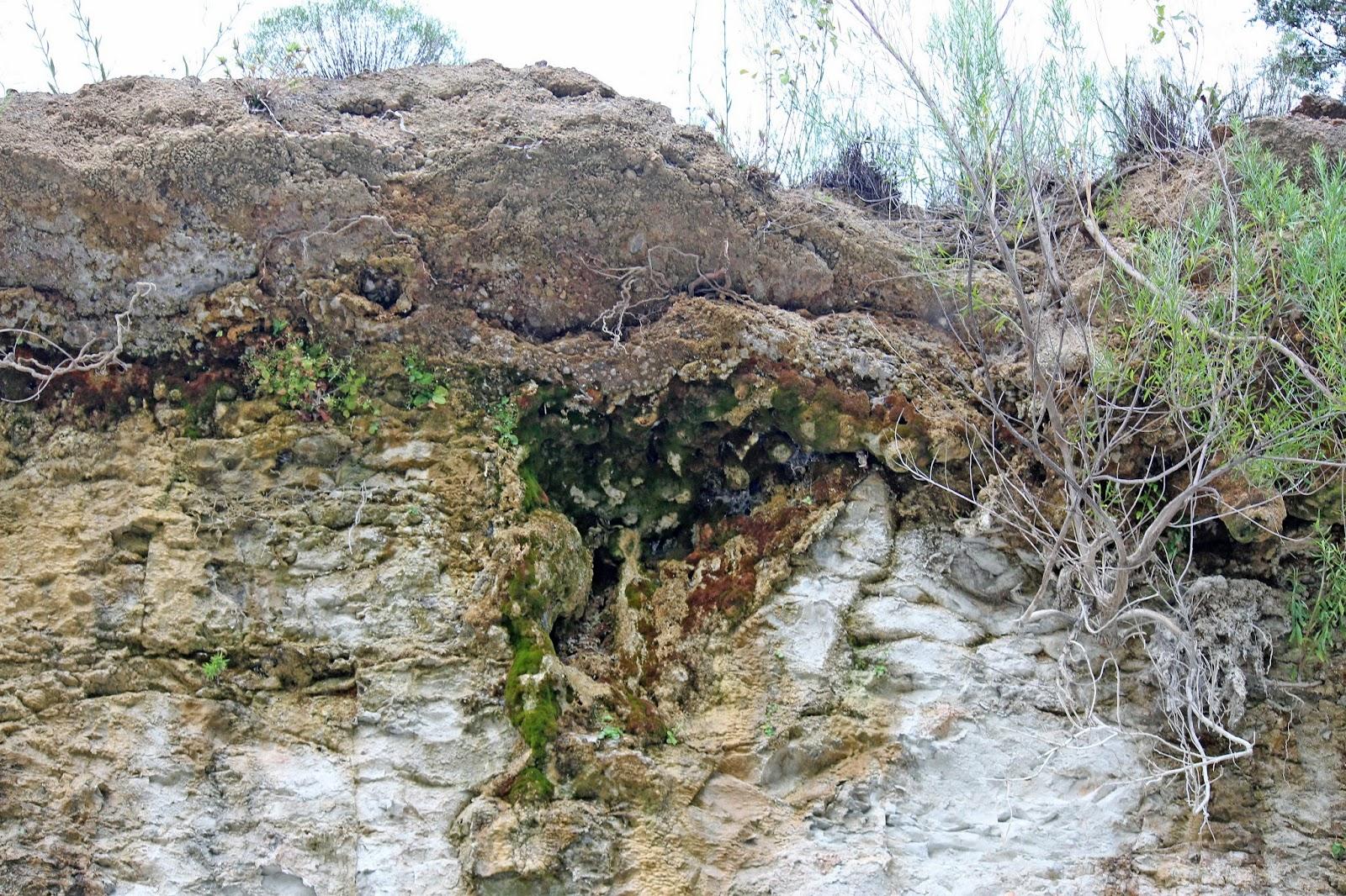 barren springs personals 228 edmonton ln, barren springs, va is a 912 sq ft 3 bed, 1 bath home sold in barren springs, virginia.