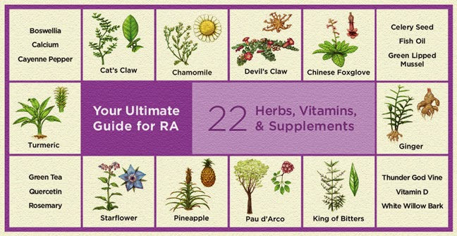 Foods for long life new healthline guide to herbs and