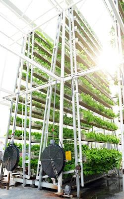 Sistem Pertanian di Singapura