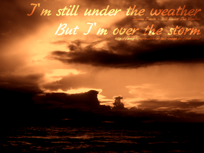 Still Under The Weather - Shania Twain Song Lyric Quote in Text Image
