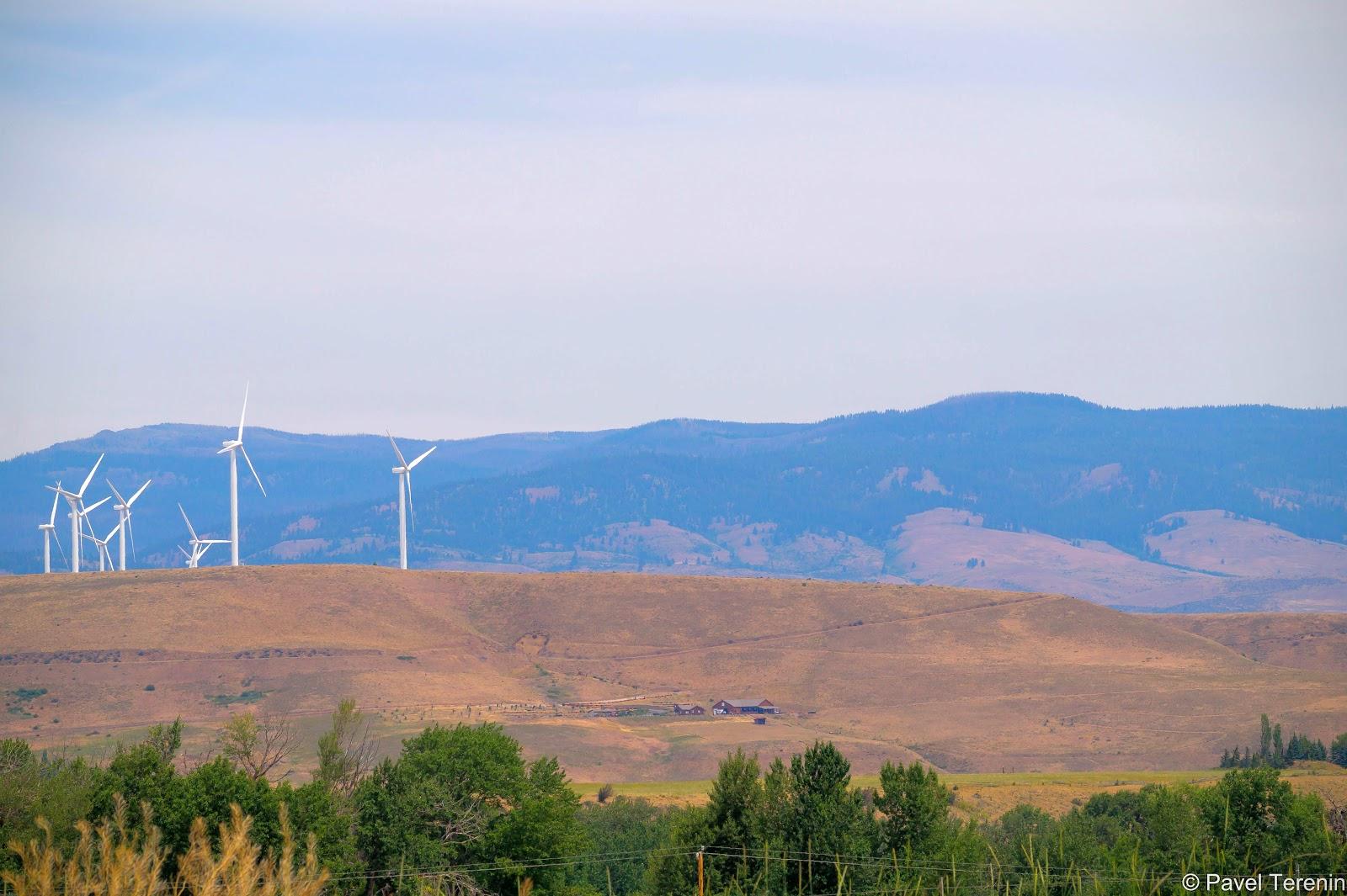 Отсутствие лесов - отличное условие для ветряных электростанций, которые целыми полями расположились в долине